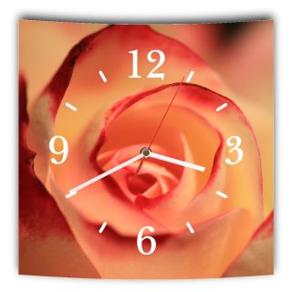 LAUTLOSE Designer Wanduhr mit Spruch Rose rosa grau weiß modern Dekoschild Abstrakt Bild 29,5 x 28cm