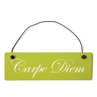 Carpe Diem Dekoschild Türschild grün mit Draht