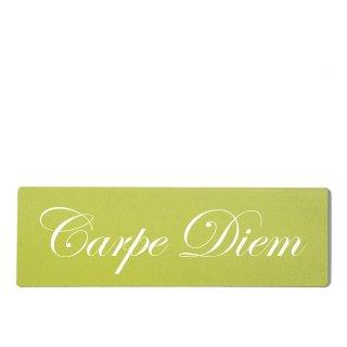Carpe Diem Dekoschild Türschild grün zum kleben