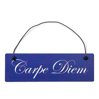 Carpe Diem Dekoschild Türschild hellblau mit Draht
