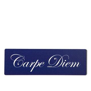 Carpe Diem Dekoschild Türschild hellblau zum kleben