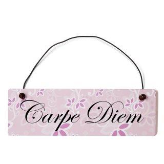 Carpe Diem Dekoschild Türschild rosa mit Draht